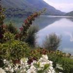 lago panorama