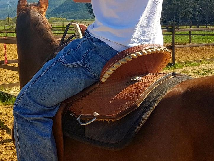 luciani horses 12