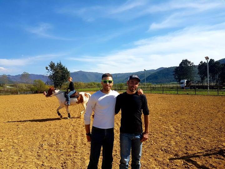 luciani horses 7